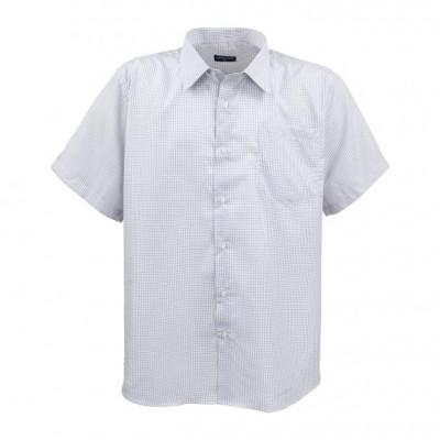 Риза лято